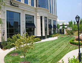Friscos Commercial Landscaping
