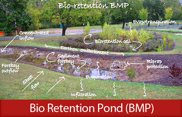 Bio Retention Pond